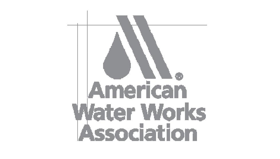 American Water Work Associaltion